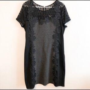 Stitch Fix 41 Hawthorn Black Lace Sheath Dress